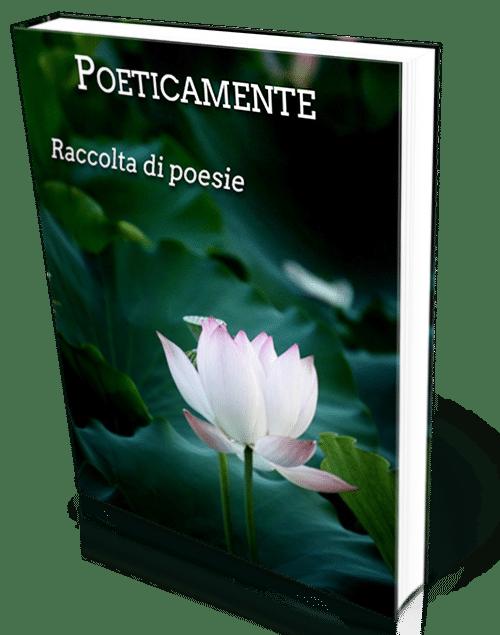 Poeticamente 3d