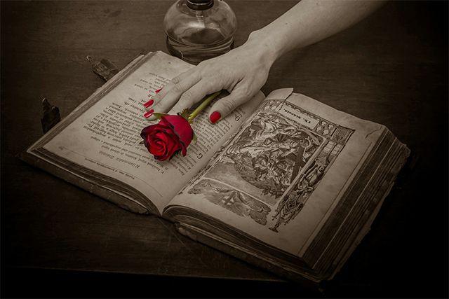 Una rosa e un libro