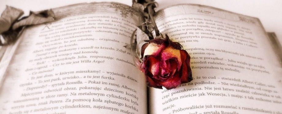 """San Giorgio. Una rosa, un libro"" - Fiera del libro"