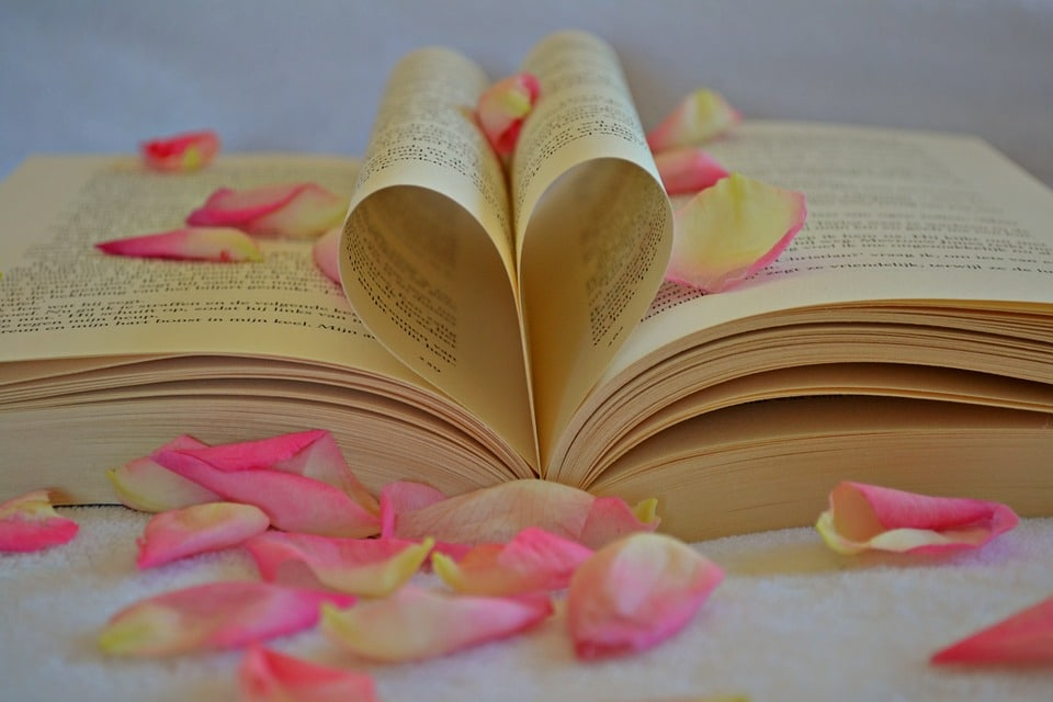 book-1169437_960_720